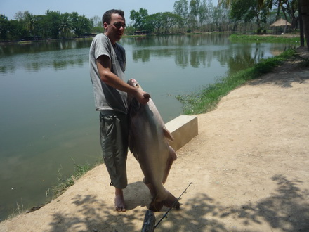 Chiang Mai Fishing