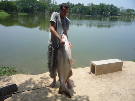 CHIANGMAI FISHING TOUR 1:The ultimate big challenging games( easy fishing )