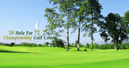 Chiang Mai golf tour organizer and VIP transfer to Mae Jo golf club