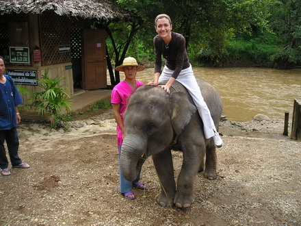 To be an elephant owner for 1 day!!Chiang Mai Thai Elephant Home Thailand.