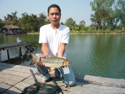 Chiang Mai fishing tour special program at our very own private lake!!!!
