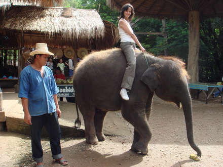 Chiang Rai - Chiang Mai Special Program : The Best Of North Thailand (6 Days 5 Nights)